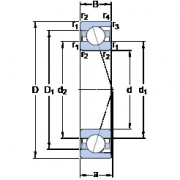 7036 CD/HCP4A SKF Angular Contact Ball Bearings
